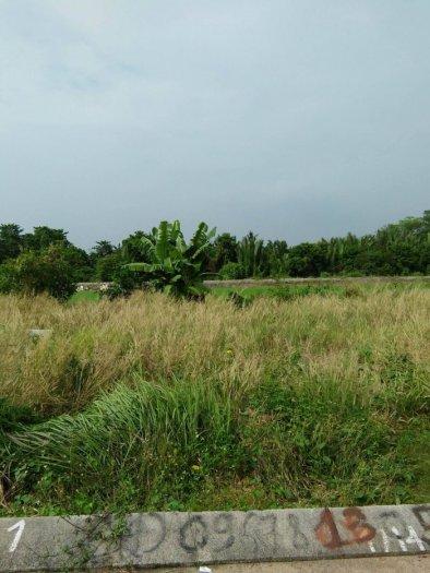 Đất tại Thạnh Xuân 22, DT: 56m2, giá: 1.53 tỷ đường 7m , SHR