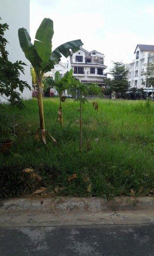 Bán đất khu Kim Sơn. DT: 5x20m.