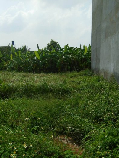 Đất tại Thạnh Xuân 52, DT: 52m2, Giá: 940 triệu,sổ hồng riêng