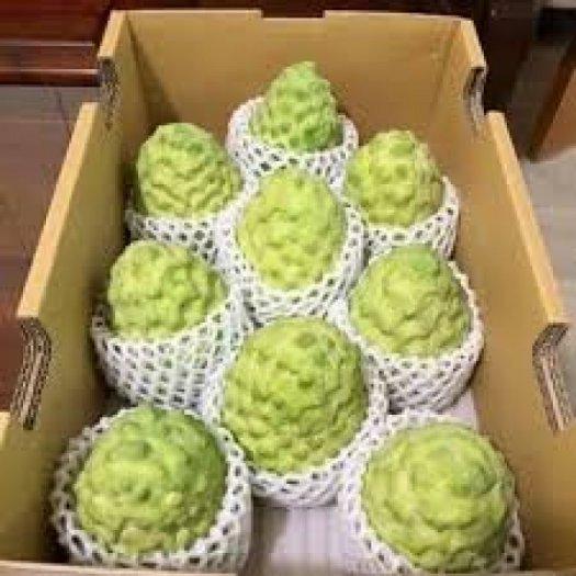 Chuyên cung cấp cây giống na bở Đài Loan, cây na bở, cây na Đài Loan, cây na, na Đài Loan, na bở6