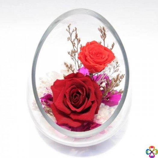 hoa hồng bất tử lọ xéo - tone đỏ6