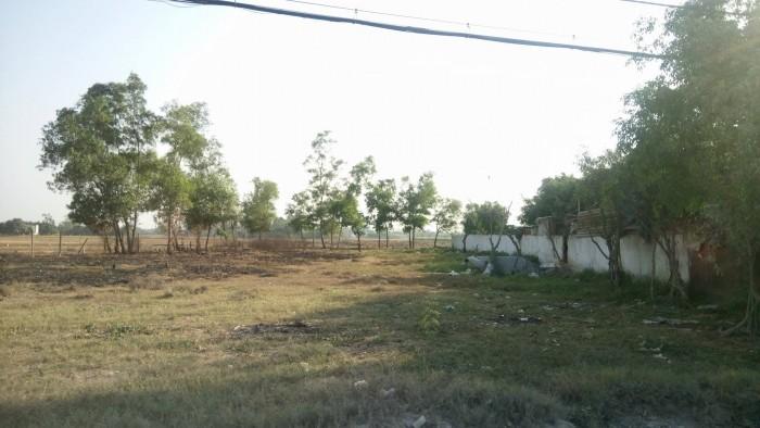 BC493_Cần bán đất MT Nguyễn Cửu Phú xã Tân Kiên , huyện Bình Chánh