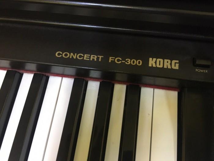 KORG FC-3001