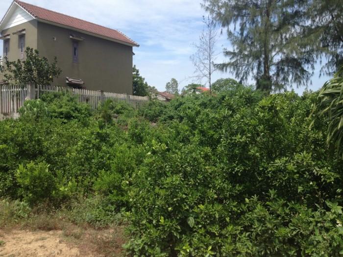Chính chủ lô đất tại thôn Đồng Nà, xã Cẩm Hà, gần sông Cổ Cò. Diện tích: 186 m2
