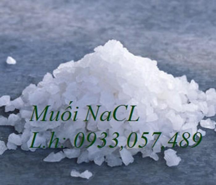 Muối công nghiệp NaCL0