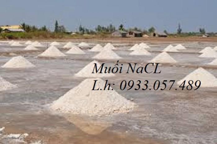 Muối công nghiệp NaCL2
