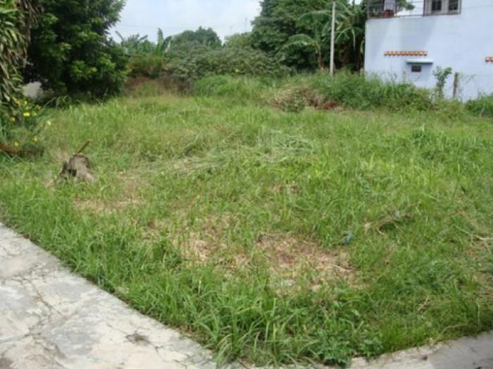 BC1201_Cần bán đất MT Thanh Niên ngay cống 4 xã Phạm Văn Hai.