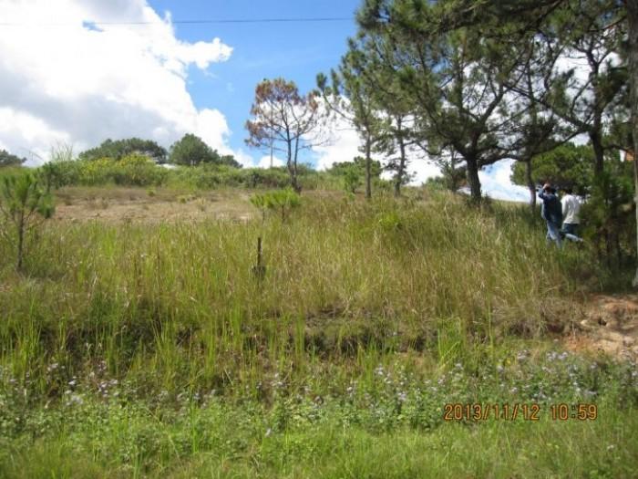 BC1196_Càn bán đất vườn đường Liên Ấp 2-6, Vĩnh Lộc A