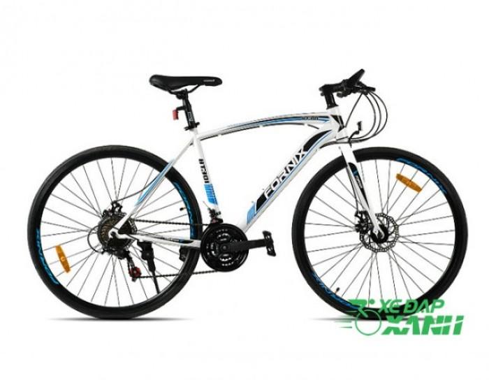 Xe đạp Fornix BT301