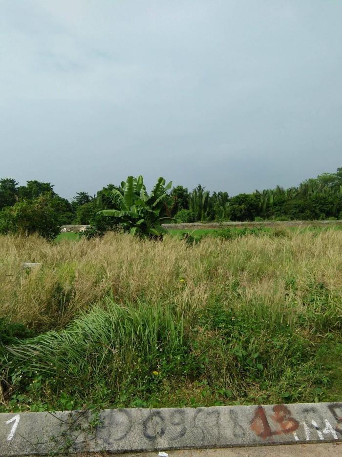 Gấp!!!!Bán đất Cách Ngã tư ga 100m, gần chợ Cầu Đồng, DT;72m2, giá 1.58 tỷ SHR