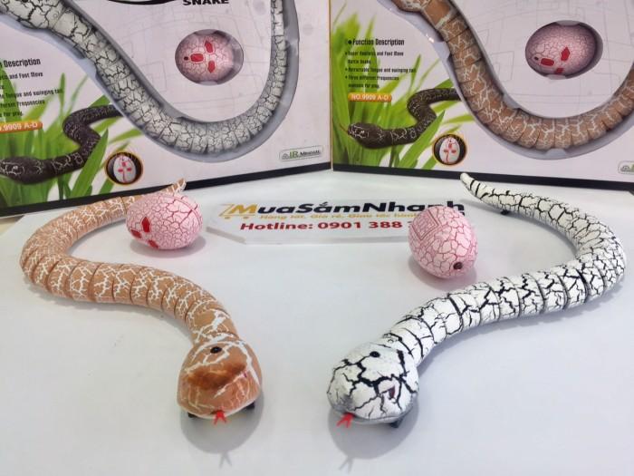 Chiều dài rắn đuôi chuông