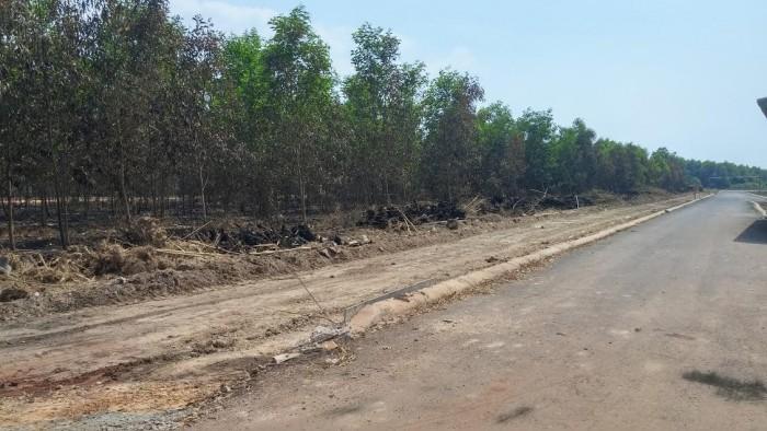 Bán đất lô sào mẫu xã Tam Phước gần KCN Giang Điền
