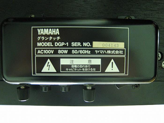 Đàn Piano điện Yamaha DGP14