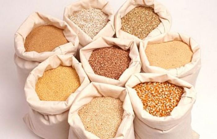 Phụ gia sản xuất thức ăn chăn nuôi|EXCENTIAL AQUA-PH - HỖ TRỢ TIÊU HOÁ & HẤP THU CHẤT DINH DƯỠNG
