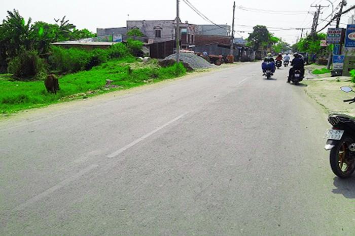 Bán gấp 1300m2 trả nợ ngân hàng đường  Liên ấp 4-5 ngang 30m , xã Đa Phước , Bình Chánh