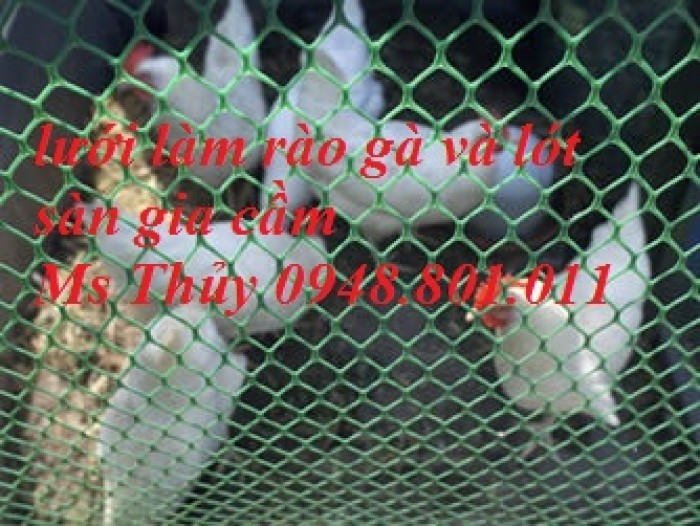 Lưới nhựa cứng chăn nuôi gà vịt, lót sàn vật nuôi rất bền1