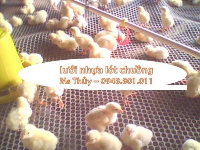 Lưới nhựa cứng chăn nuôi gà vịt, lót sàn vật nuôi rất bền2