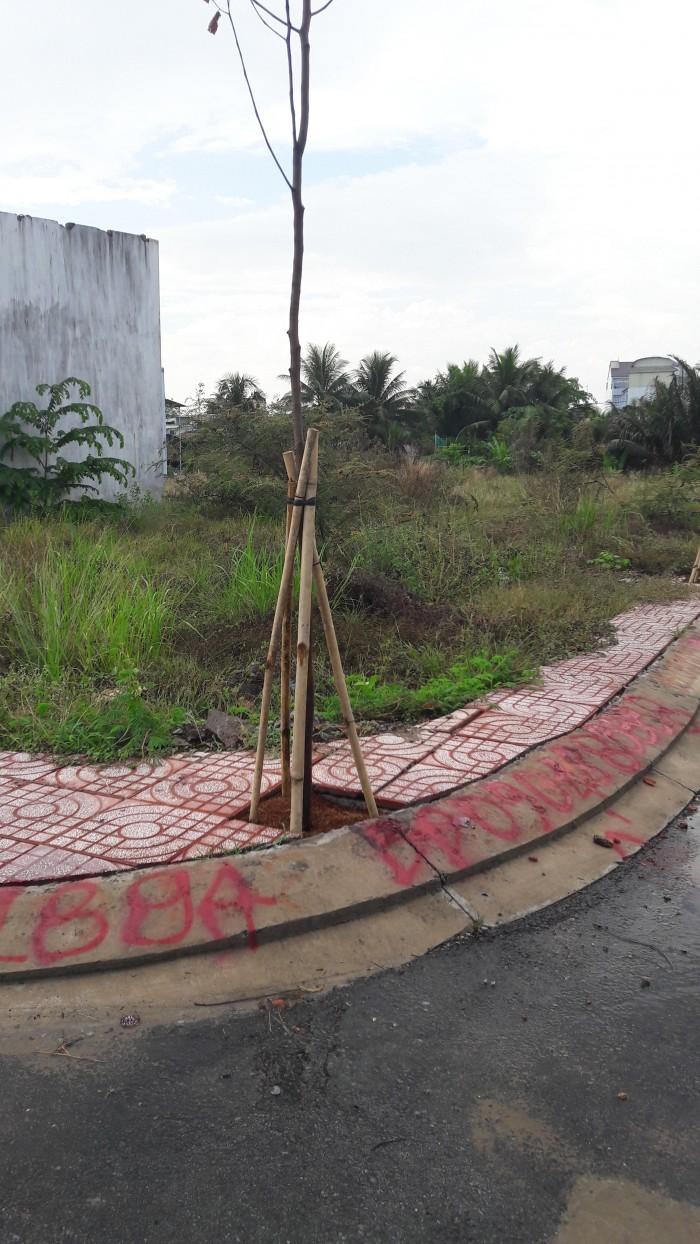 Lô đất chính chủ ngay villa park 50.4m2