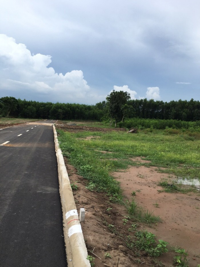Bán đất sân bay Long Thành 700 triệu/nền 500m2 đất, Sổ hồng riêng, xây dựng tự do