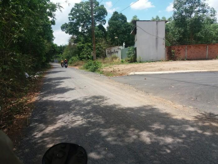 Bán đất cách quốc lộ 51 chỉ 800m Gần ngã 4 Bàu Cạn Thuộc Xã Phước Thái, SHR giá 550tr/nền 500m2
