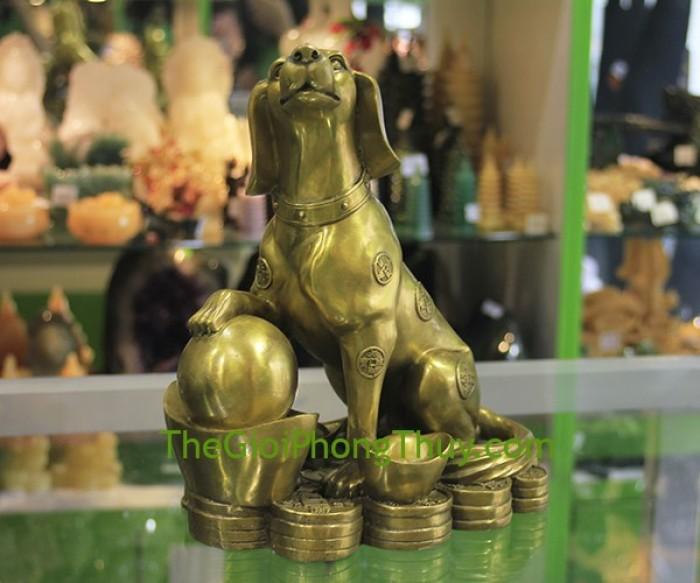 Con chó trên đỉnh vàng (khủng)0