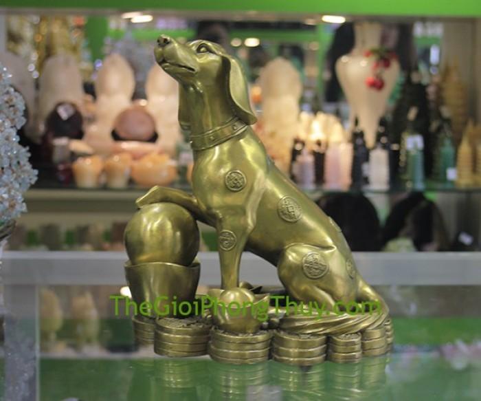 Con chó trên đỉnh vàng (khủng)1