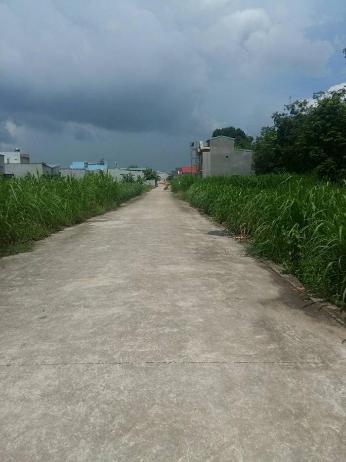 Bán Đất Hẻm Dx006 p.Phú Mỹ Thủ Dầu Một Bình Dương