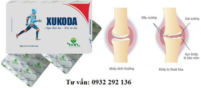 Xukoda sự kết hợp của bài thuốc cổ phương và công nghệ hiện đại trong việc hỗ trợ điều trị xương khớp