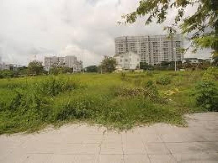 Đất Mt Đường 5 Lò Lu ,Phường Trường Thạnh ,Q9 .