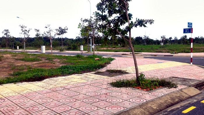 Đất nền 892 Đường D1 dự án Hồ Sinh Thái Lộc An, Long Thành