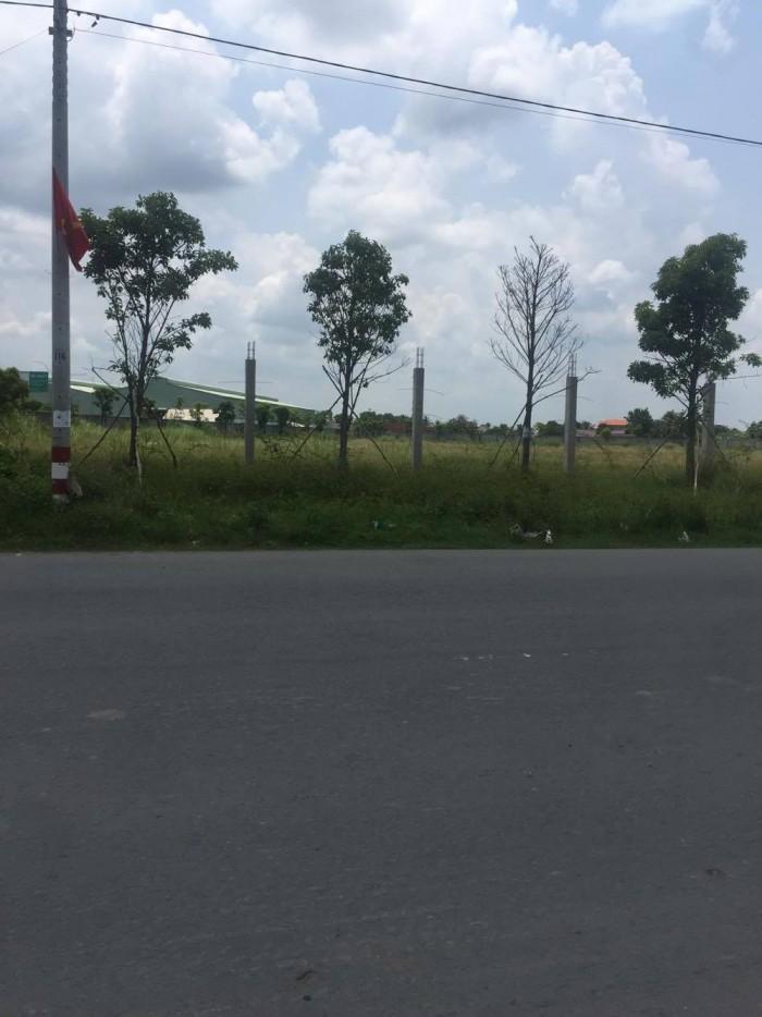 Chuyển công tác về quê cần bán gấp lô đất đường 6T Hưng Long ,Bình Chánh DT.3047m2 ( ngang 30m)
