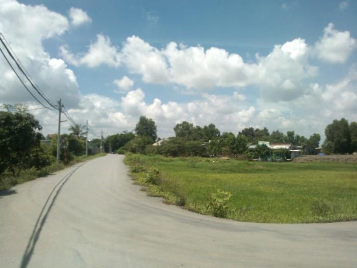 Đất vị trí đẹp, 2,000m2 (ngang 60) 4,7 tỷ, 2 mặt tiền đường Bùi Văn Sự, Qui đức Bình Chánh.