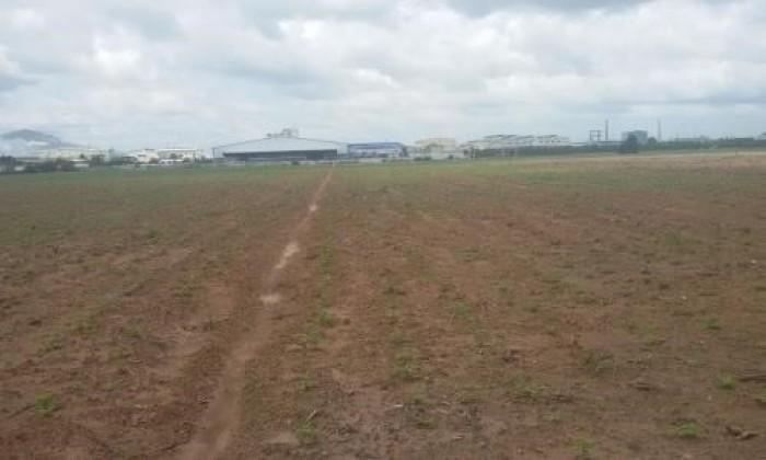 Cho thuê đất công nghiệp 10000m có cắt nhỏ tại Cao Thượng Tân Yên Bắc Giang