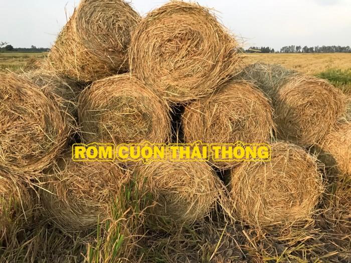 Bán rơm cuộn : thức ăn cho gia súc trâu bò, trồng nấm, tủ gốc thanh long