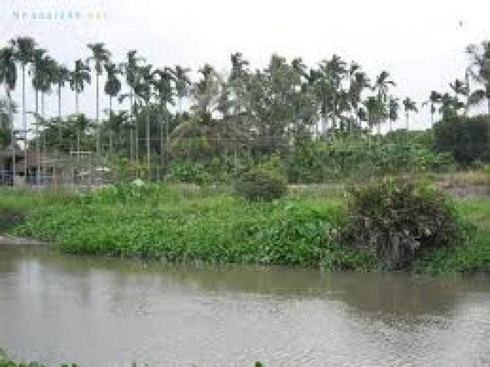 Cần bán lô đất biệt thự nhà vườn (20x30) gần cầu Rạch Tra giá 3ty có vườn và gần sông.