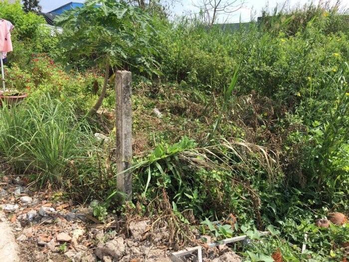 Bán đất 250m2 mặt tiền Lê Hồng Phong Cần Thơ