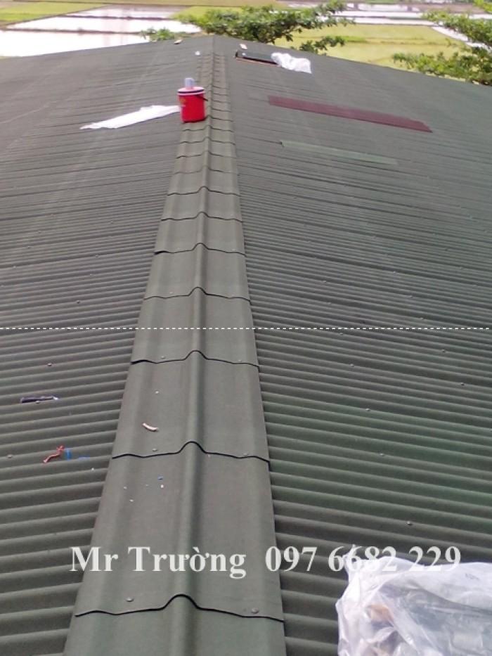 Bán tôn chống nóng tại Hà Nội7