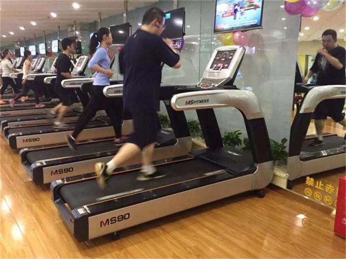 Máy Chạy Bộ Ms90,Bán Máy Chạy Bộ Phòng Gym Ms 90 Tại Nha Trang,Bình Định,Gia Lai2
