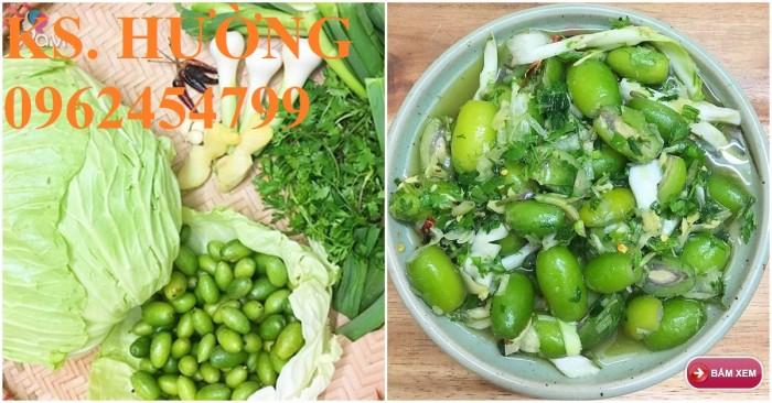 Cung cấp cây giống nhót mỹ, cây nhót tây (nhót ngọt cao sản), chuẩn giống nhập khẩu, giao hàng toàn quốc16