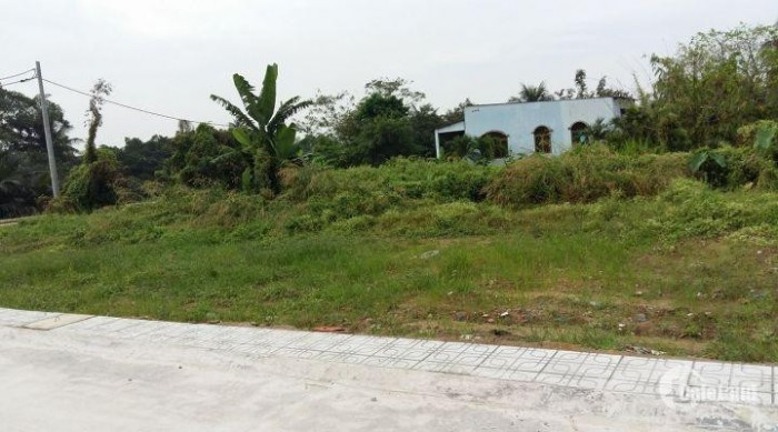 Cần bán lô đất (7x27)m gần trường tiểu học Bình Mỹ 2 Tỉnh Lộ 9 giá 1 tỷ 266.
