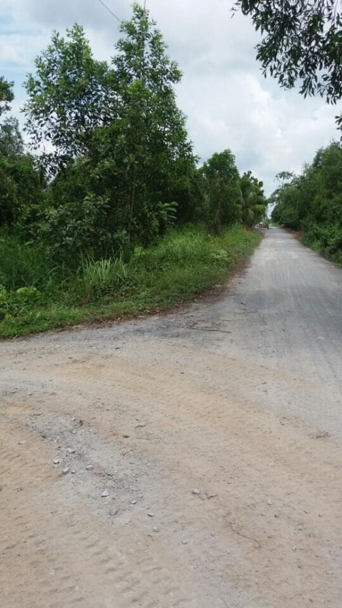 Bán đất 4600m2 kinh 11 xã Bình Lợi Huyện Bình Chánh