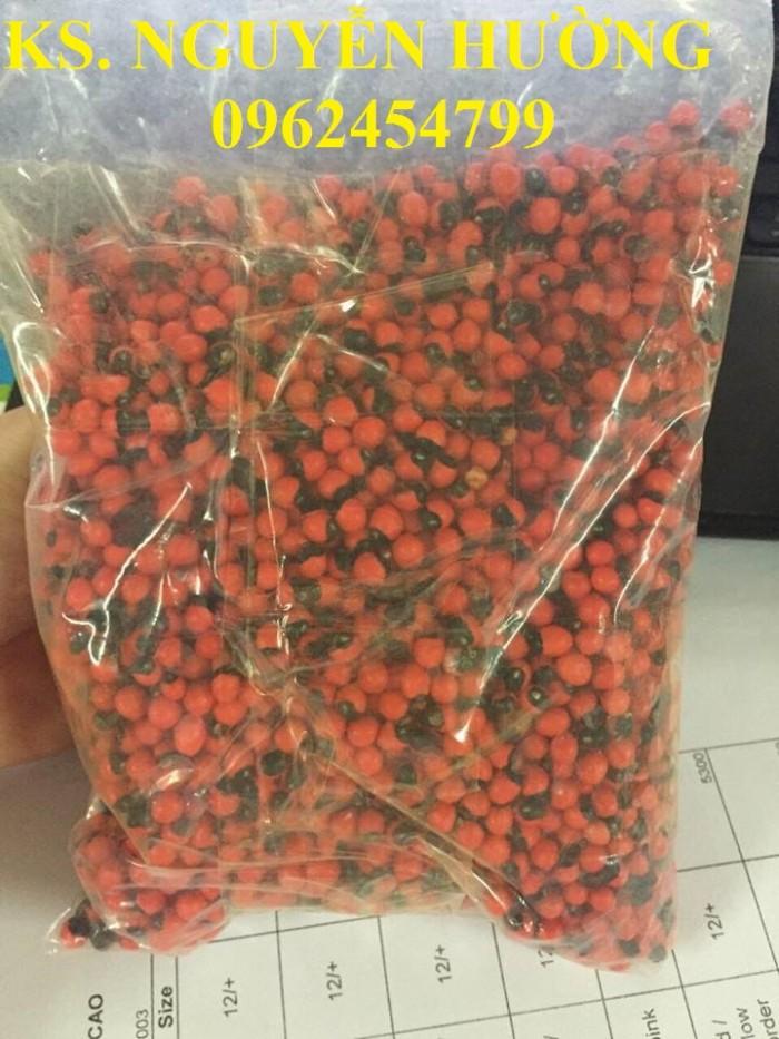 Cung cấp hạt giống sâm ngọc linh, cam kết chuẩn giống, giao hàng toàn quốc17