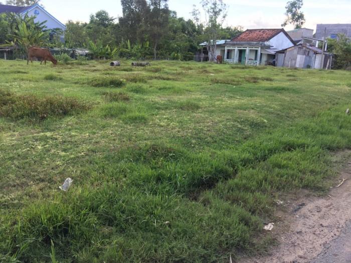 1000 m2 đất thổ cư Bình chánh giá 2.6tr / m2.