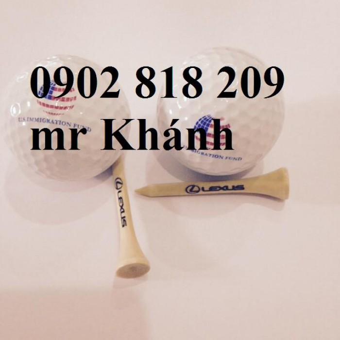 Cung cấp tee golf và dịch vụ in logo lên tee golf làm quà tặng9