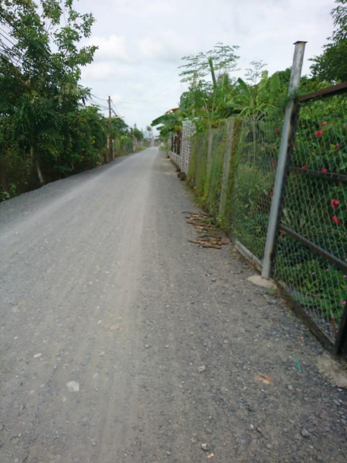 Nợ tiền sang gấp133m2 đường Nhánh Tân Liễu, Bình Chánh