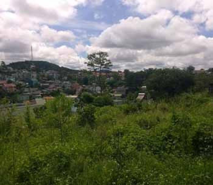 Nghỉ dưỡng hoặc định cư tại Đà Lạt với đất giá rẻ p3 – Bất Động Sản Liên Minh