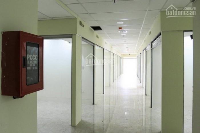 Sạp kinh doanh vĩnh viễn trong trung tâm thương mại 7 tầng, liền kề chợ Tân Bình