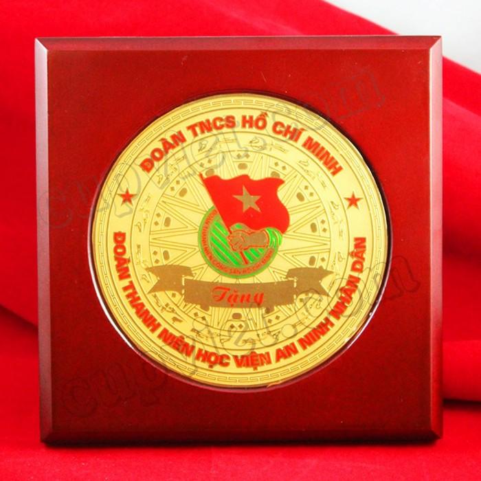 Biểu trưng đồng ăn mòn logo ĐTNCS Hồ Chí Minh2