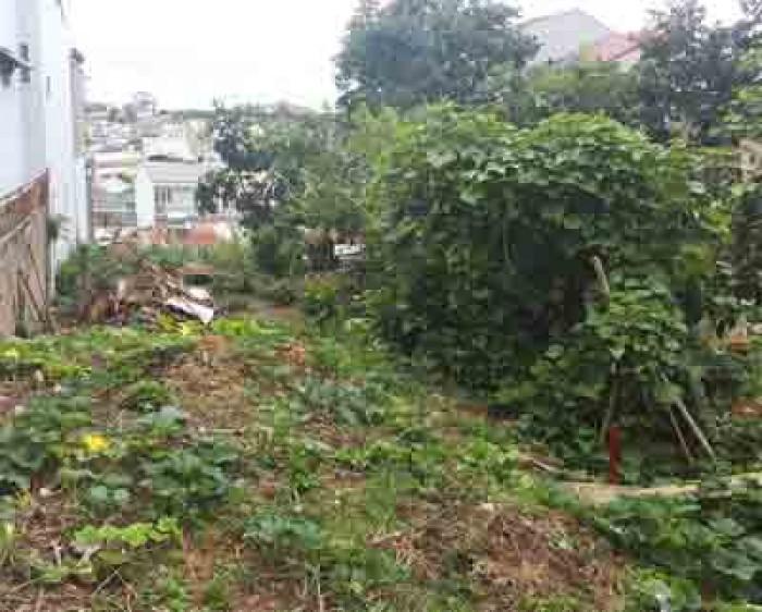Đất xây dựng sổ đỏ riêng phường 2 gần trung tâm Đà Lạt – Bất Động Sản Liên Minh