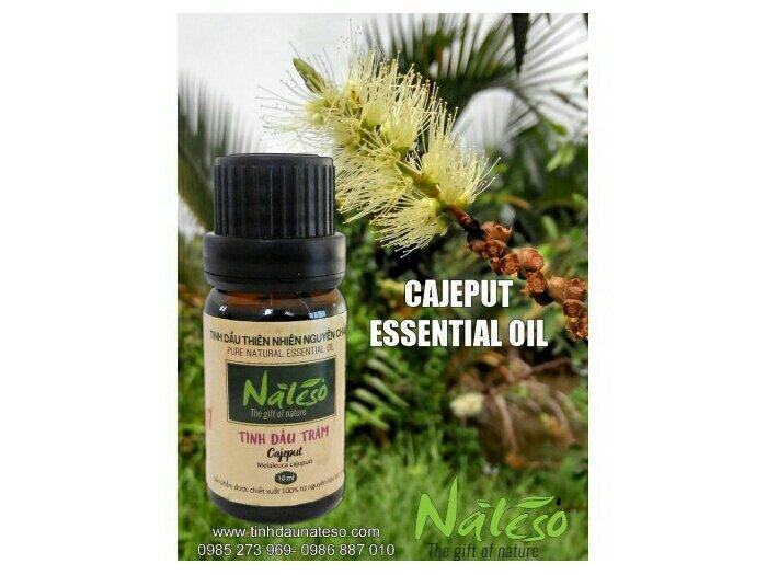 Tinh dầu tràm nguyên chất Nateso Classic